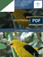 apresentaoinvestigaoictericaobstrutiva-101116215245-phpapp02.pdf