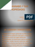 La Cannabis y Sus Propiedades