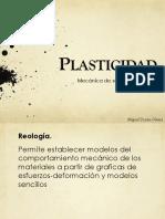 Plasticidad Miguel
