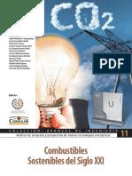 ICAI_Combustibles Sostenibles en el Siglo XXI.pdf