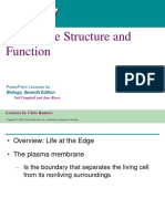 Chapter 7 - Membrane Structure and Function