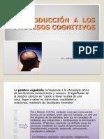 Introducción a Los Procesos Cognitivos (1)