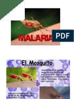 Presentación1 MALARIA