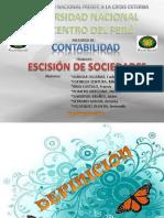41248675-Trabajo-Grupo-Escision-Caso-de-una-Escision.pptx