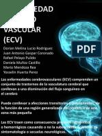 Enfermedades Cerebro Vasculares