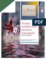 Programa Curso Terapia Centrada en La Persona y Experiencial