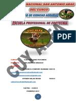 ESTATUTO DE CUY ALFA.pdf
