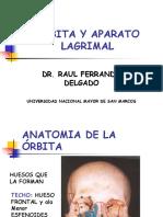 Orbita y Aparato Lacrimal