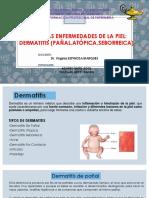 29.Otras Enferm. de Piel Dermatitis de Pañal