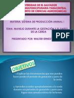 xposistemadeprodanim-140628120851-phpapp02