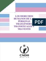 31 DH Transgenero