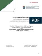 Fetal-Growth-Restriction.pdf