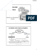 Absorclipidos-lipoproteinas2012