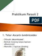Praktikum Parasit 2.pptx
