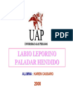 labioleporinoypaladarhendido-090517220647-phpapp02.pdf