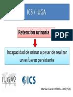 Definicion ICS