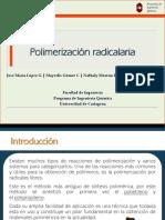 Polimerización Radical Final