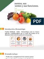 Los Alimentos, Sus Componentes y Sus Funciones