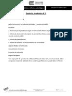 Producto Académico N 2  2017.docx