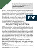 CASITO.pdf