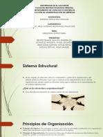 SUBSISTEMA ESTRUCTURAL.pptx