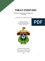CONTOH LAPORAN INDIVIDU KKN.pdf