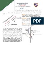 Vector.docx