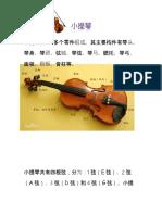violin.docx