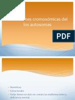alteracionescromosmicasdellosautosomas-110315005624-phpapp02