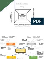 Coordenadas metodológicas