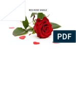 RED ROSE SINGLE.docx