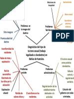 Dianóstico del tipo de turismo sexual (trabajo legalizado o clandestino) en bahías de Huatulco (imaginación sociológica).pptx