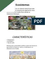 Ecosistemas en Mexico3