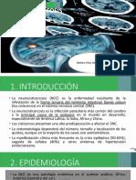 Neurocisticercosis PAPU.pptx