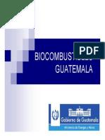 Bio Combustibles Guatemala