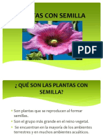 plantasconsemilla-161106204037.pdf