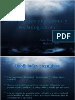 Habilidades Cognitivas y Metacognitivas