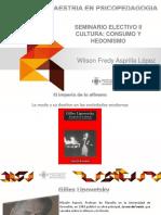 Cultura Consumo y Hedonismo 2017