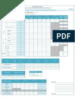 205 Reporte Planificacion Familiar Fto20171.Xlsx-Aucayacu