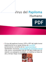 Virus Del Papiloma Humano (1)