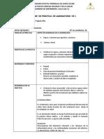 Formato de Informe de Práctica (1)
