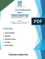 Sistema Endocrino EQ9