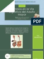 Cambios en la Vía Digestiva del Adulto Mayor.pptx
