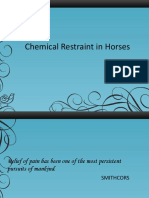 Chemical Restraint in Horses