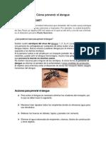 Cómo Prevenir El Dengue, La Zika, y Chikungunya
