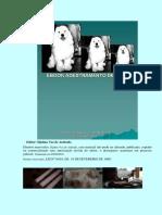 eBook Adestramento de Cc3a3es PDF