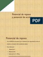 Potencial de reposo y potencial de acción.pdf