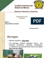 reproduccionovina-140526143701-phpapp02