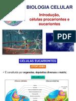 Aula 3 - Biologia Celular (Parte 2) - Introdução, Células Procariontes e Eucariontes
