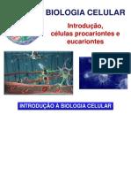 Aula 2 - Biologia Celular (Parte 1) - Introdução, Células Procariontes e Eucariontes